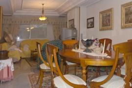 Продажа виллы в провинции Costa Blanca South, Испания: 12 спален, 500 м2, № INM-00628 – фото 10