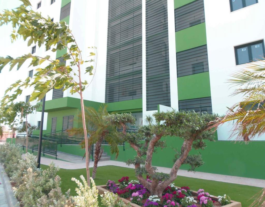 NC2478VP : Новые квартиры в Ориуэла Коста, Миль Пальмерас