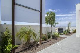Продажа виллы в провинции Costa Blanca South, Испания: 3 спальни, 101 м2, № NC2477LC – фото 6