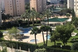 Продажа апартаментов в провинции Costa Blanca North, Испания: 2 спальни, 70 м2, № GT-0058-TN – фото 7