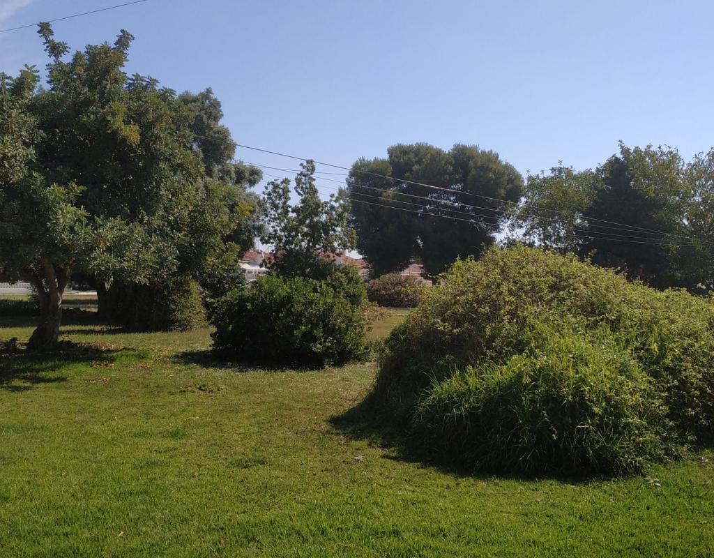 GT-0116-TN : Бунгало с большим садом, рядом с пляжем, Торревьеха