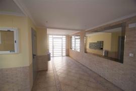 Продажа апартаментов в провинции Costa Blanca South, Испания: 3 спальни, № GT-0144-TK – фото 15