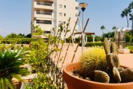 Продажа апартаментов в провинции Costa Blanca South, Испания: 1 спальня, 54 м2, № GT-0180-TO – фото 16