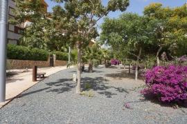 Продажа апартаментов в провинции Costa Blanca South, Испания: 2 спальни, 70 м2, № GT-0208-TN – фото 23