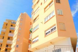 Продажа апартаментов в провинции Costa Blanca South, Испания: 3 спальни, № GT-0205-TN – фото 29