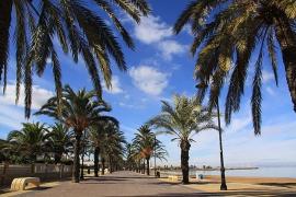 Продажа апартаментов в провинции Costa Calida (Murcia), Испания: 2 спальни, 70 м2, № NC1793CO – фото 10