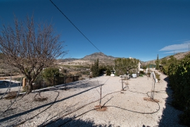 Продажа виллы в провинции Costa Calida (Murcia), Испания: 4 спальни, 210 м2, № RV1911CO – фото 15
