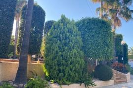 Продажа виллы в провинции Costa Blanca North, Испания: 4 спальни, 345 м2, № RV0205ID – фото 31