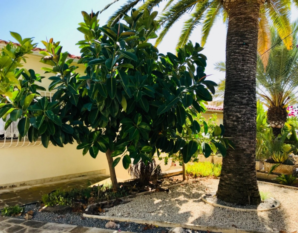 RV0198EU : Отдельная вилла с видом на море и горы Ла Нусия, Бенидорм
